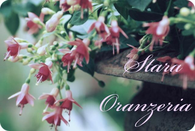 Stara Oranżeria