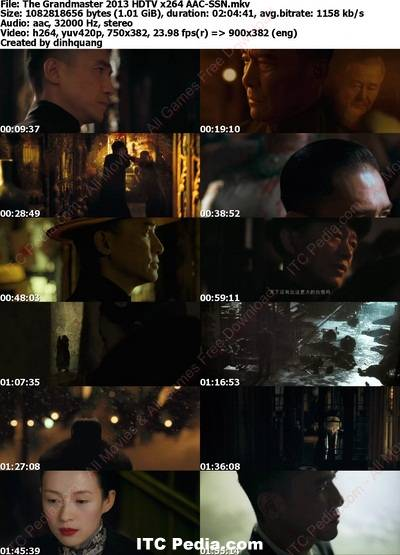 The Grandmaster 2013 HDTV x264 AAC - SSN