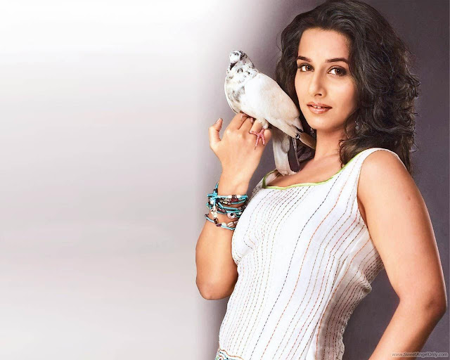 Actress Vidya Balan Wallpaper