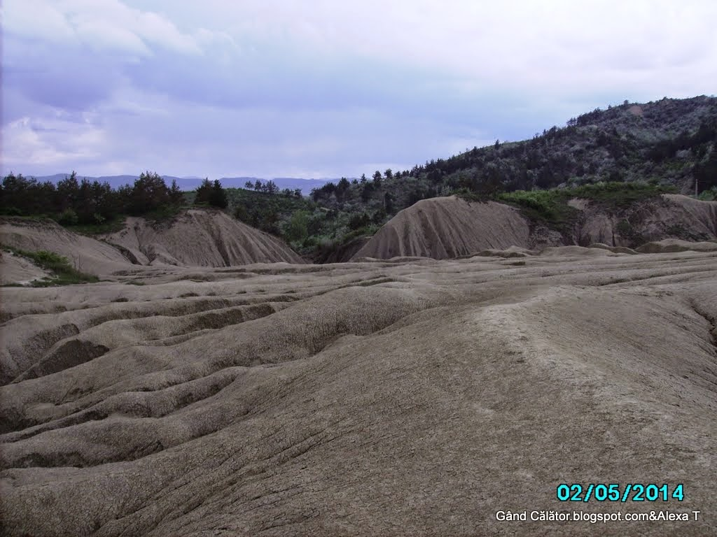 Photo serie: Geological & botanical views. Vulcanii Noroioși de la Pâclele Mari.  The Big Mud Volcanoes from Pâclele Mari.  Arhiva foto privată/ Private photos archive. Click to see enlarged views.