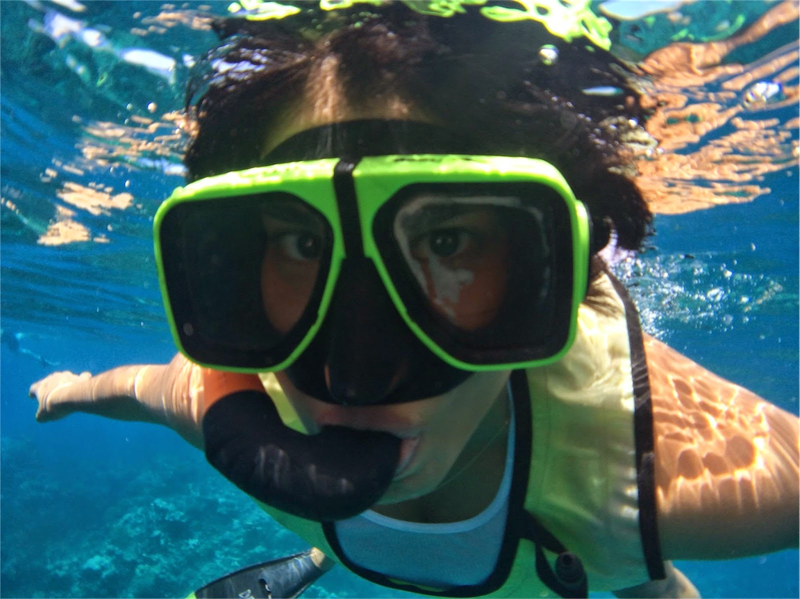 Snorkeling in Cayman Islands\\ Princess Cruises
