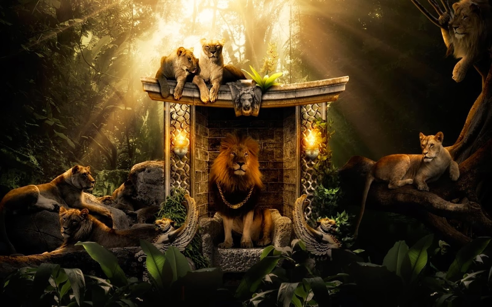 "<img src=""http://1.bp.blogspot.com/-tZzV3Xh6cmc/UuFikpeR-bI/AAAAAAAAJ_A/45SjH9T_uAY/s1600/lions-jungle-wallpaper.jpg"" alt=""lions jungle wallpaper"" />"