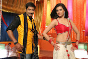 Hamsha Nandini Item Song in Loukyam-thumbnail-4