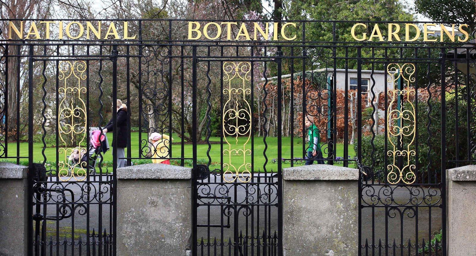 Tea Room At Dublin Botanic Garden