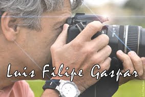 Luis Filipe Gaspar