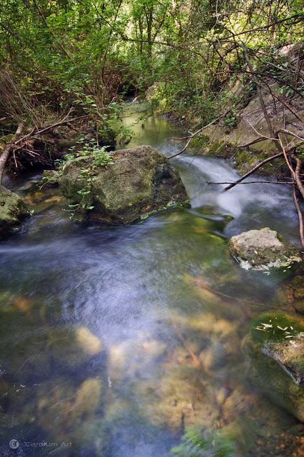 gorgues-rio-gaia-querol-tarragona