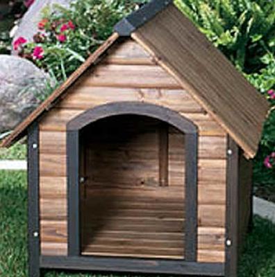Mẫu nhà cho chó bằng gỗ đẹp và sang trọng