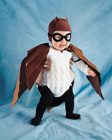 Baby Girl Owl Costumes http://cutehoots.blogspot.com/2011/10/owl-halloween-costume-round-up.html