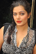 Item Song Actress Reva Photos Gallery-thumbnail-14