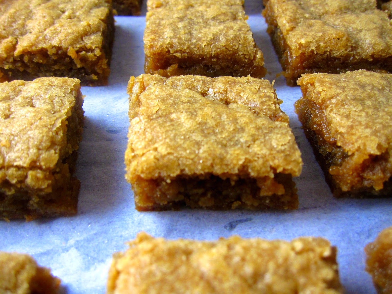 Coconut Oil Blondies