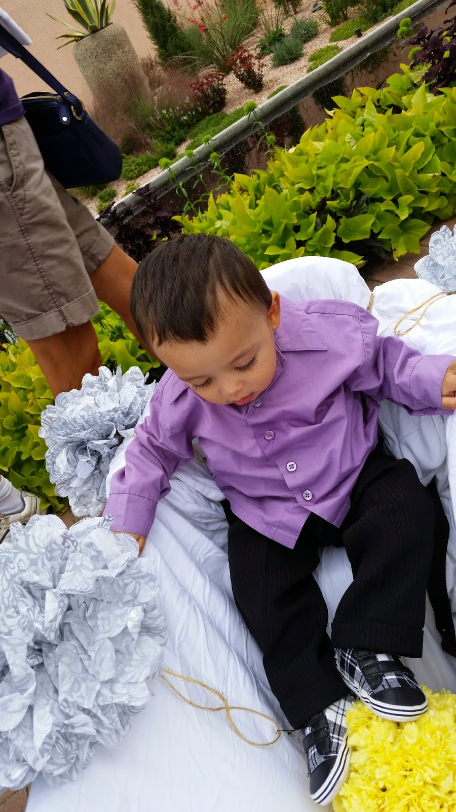 DJ Emir's Son Emerson in The Wedding Ring Bearer Cart at Denver Botanic Gardens