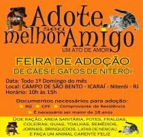 Feira de Adoção no Campo de São Bento - Niterói