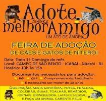 Feira de Adoção no Campo de São Bento - Niterói