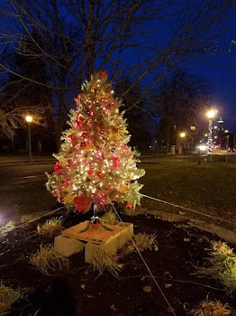 Tree Up on Massey Street Island...Thanks Allison !