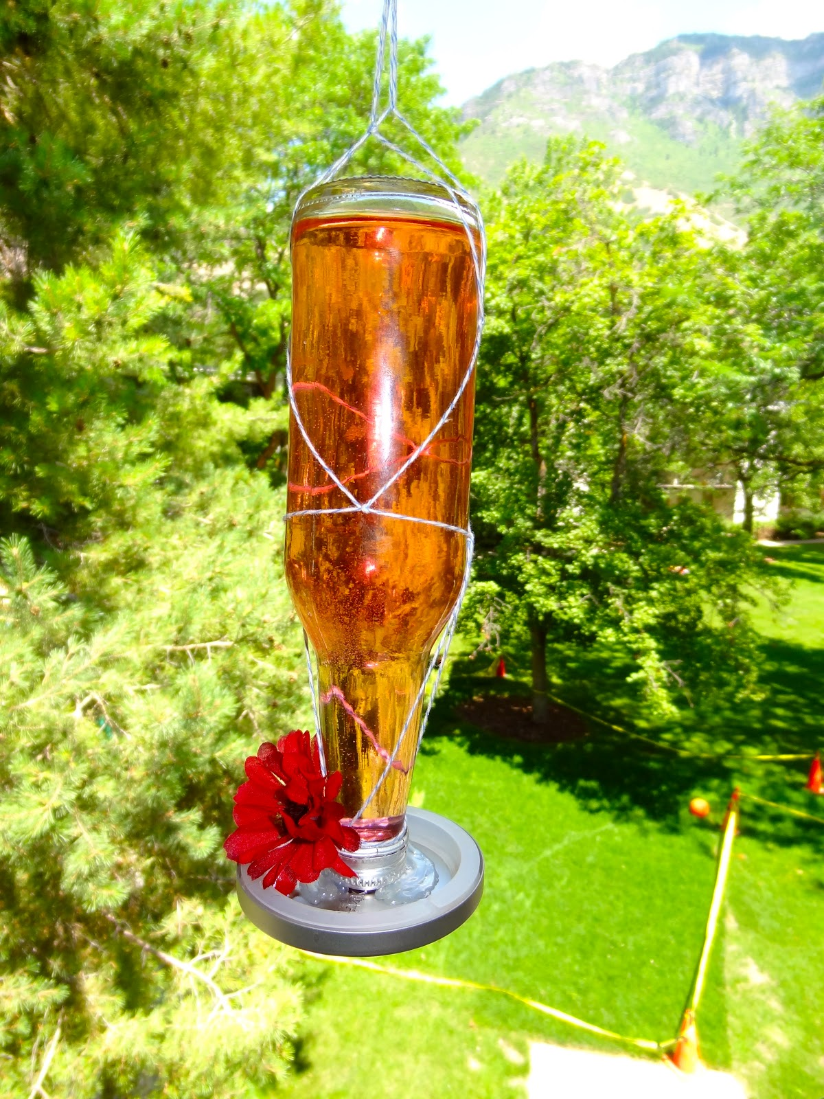 The little gunnell family homemade hummingbird feeder for Homemade bird feeders
