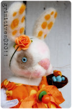 Tangerine Dream Bunny
