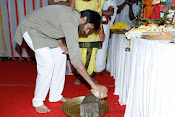Gabbar Singh 2 Movie launch-thumbnail-9