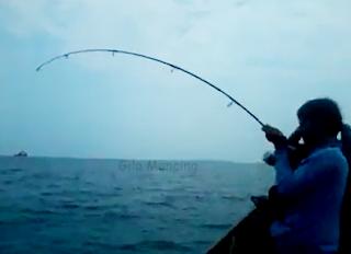 Gila Mancing Ikan GT Di Spot Kepulauan Seribu Mantap