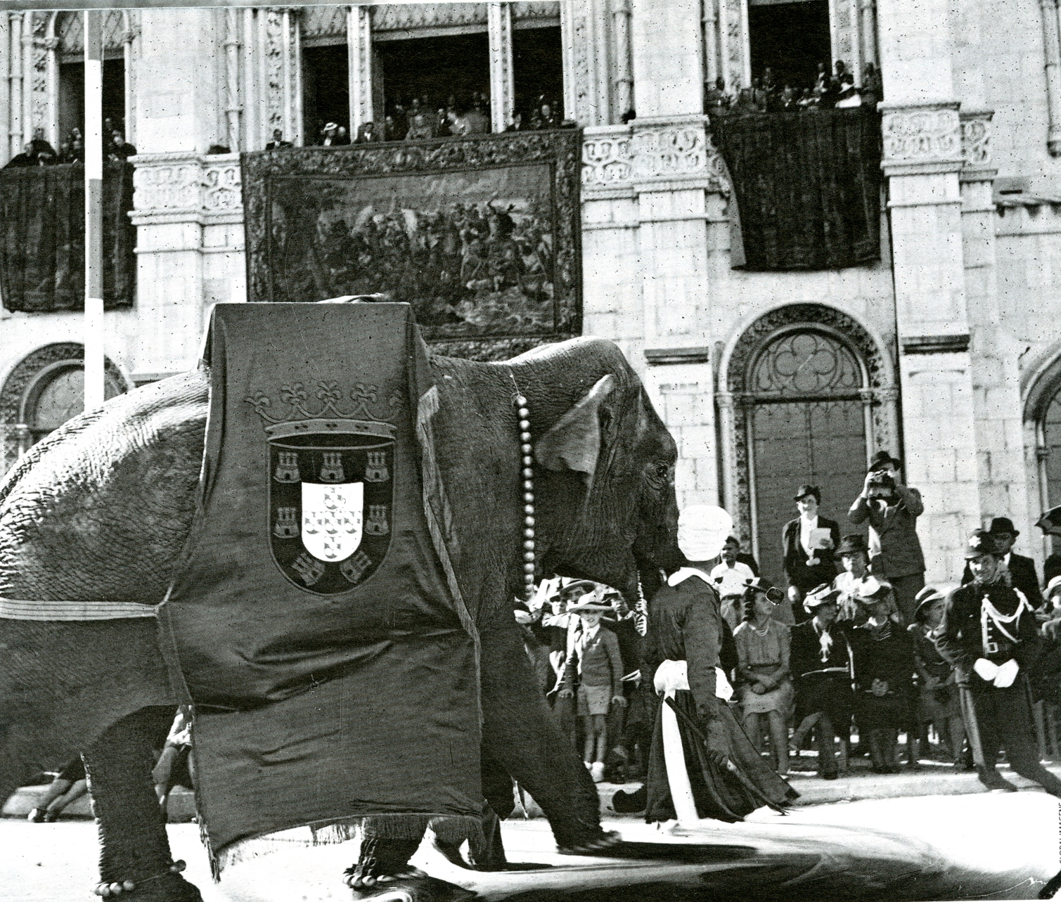 A 16th Century Pope Buried His Pet Elephant Under the Vatican ...
