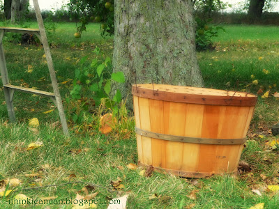 {I Think I Can}  I Love Bushel Baskets!