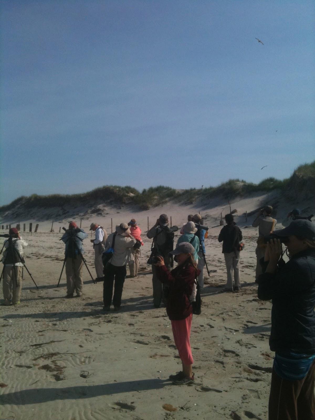 South Shore Bird Club Of Ma June 2012