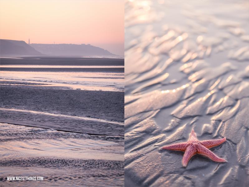 Urlaub in Nordfrankreich Opalküste #nordfrankreich #opalküste #cotedopale #wimereux #boulogne #starfish #seestern
