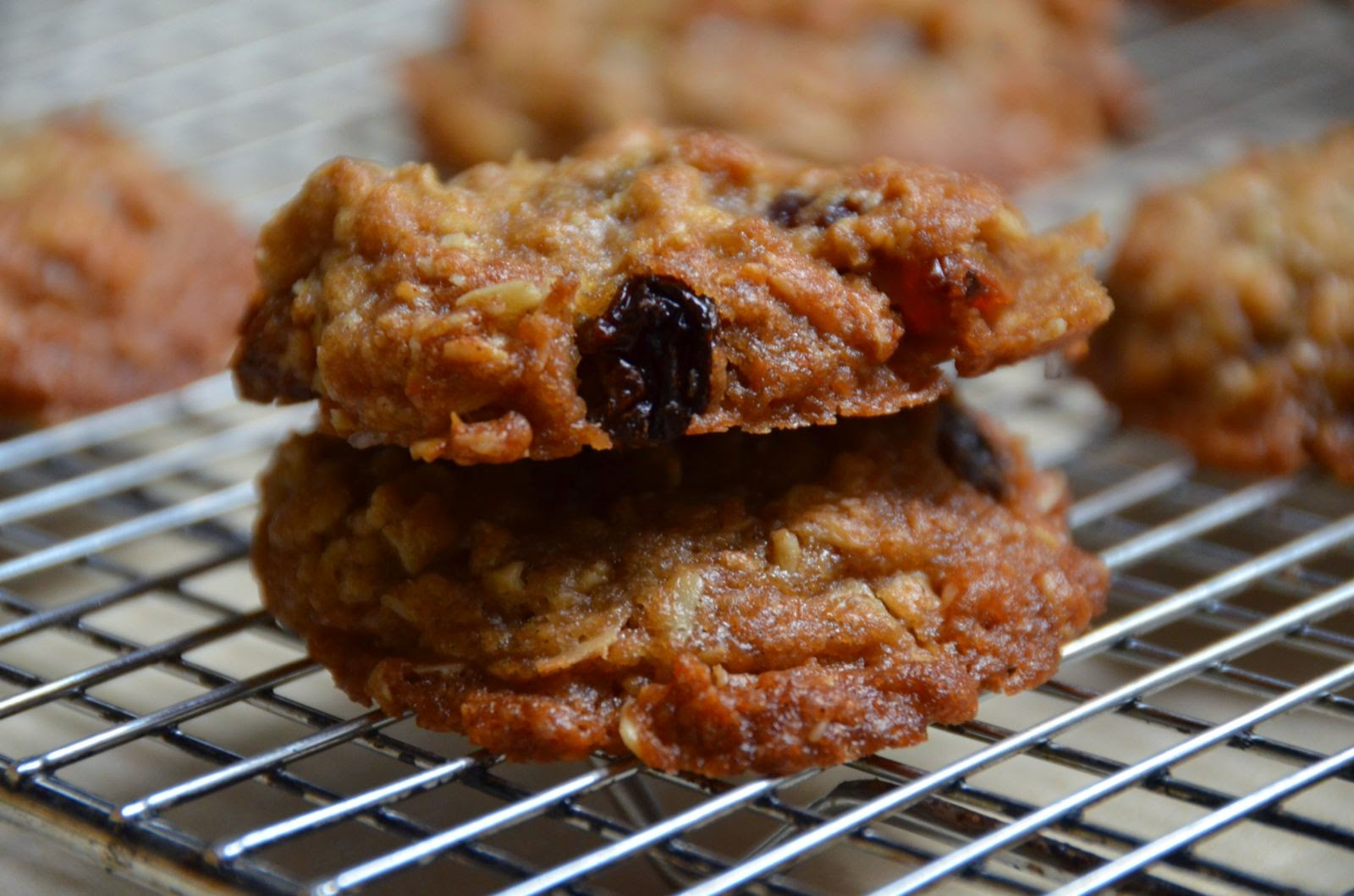 Oatmeal Coconut Raisin Cookies | Cheesy Pennies