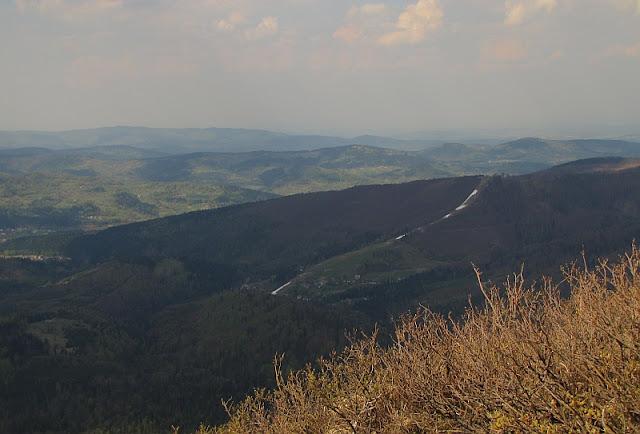 Widok z Sokolicy na Mosorny Groń (1047 m n.p.m.).