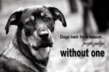 Dogs bark for a reason...