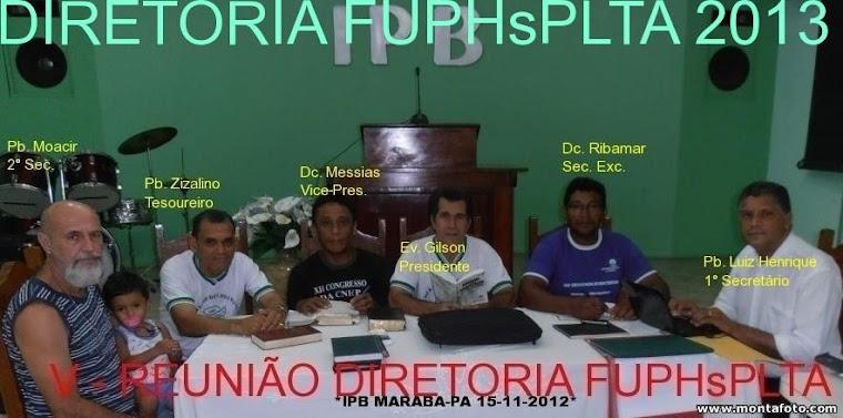 """""""DIRETORIA FUPHsPLTA 2013"""""""