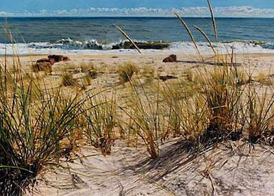 cuadros-de-paisajes-marinas-al-oleo