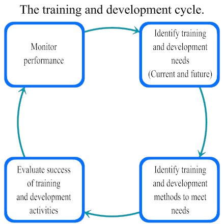training and development notes pdf