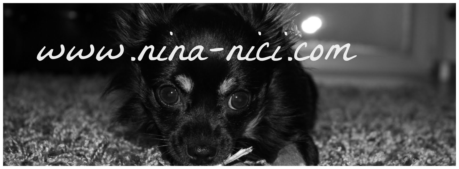 www.nina-nici.com