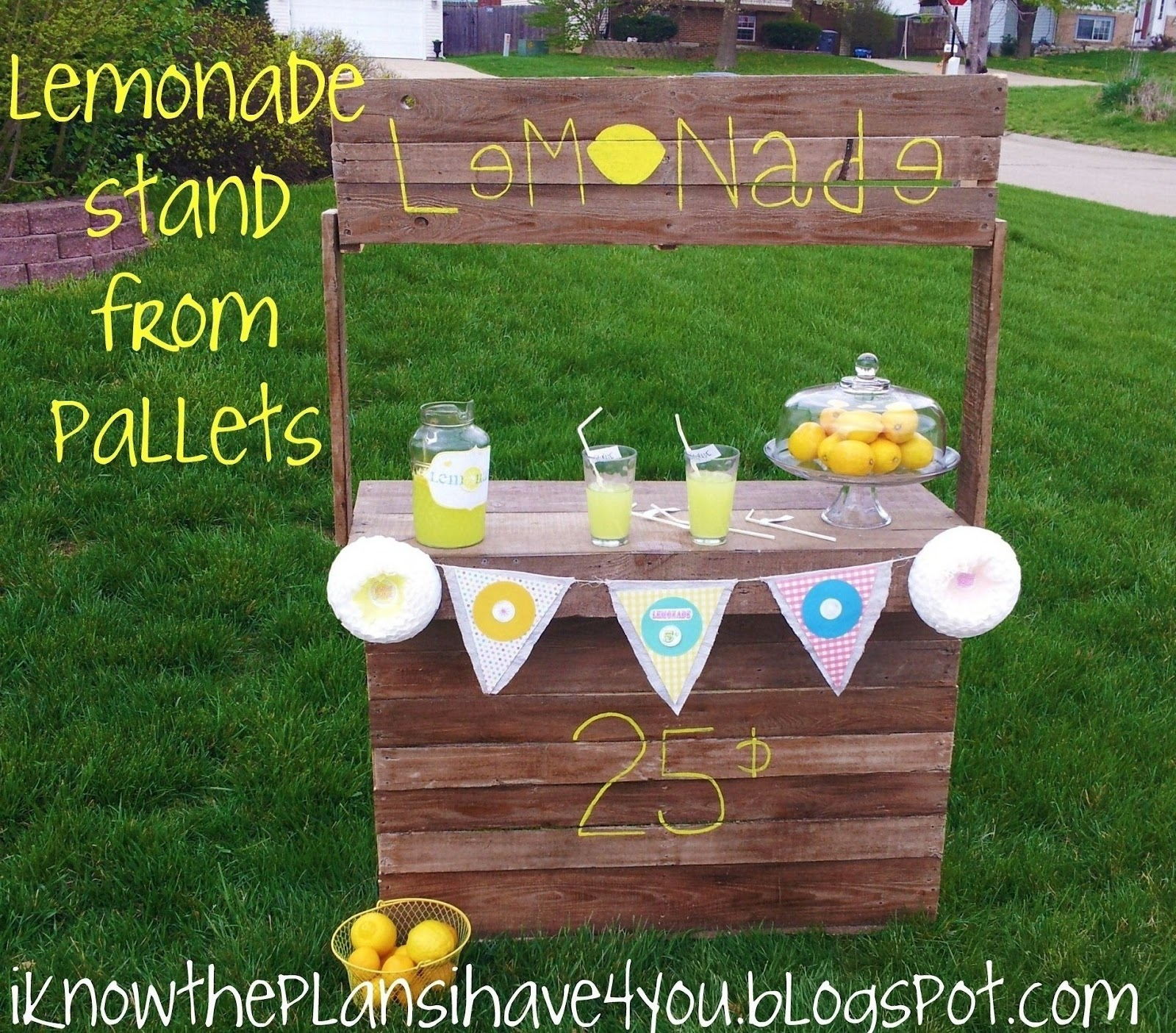 i know the plans i have for you round 3 pallet lemonade