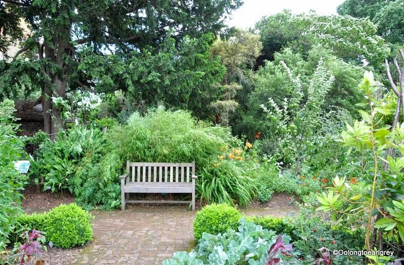 The Physic Garden, Chelsea, London