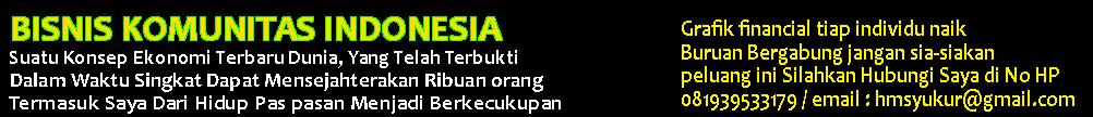 MMM | Cara Kerja MMM | Panduan MMM | MMM Indonesia | Investasi | Uang Dari Internet