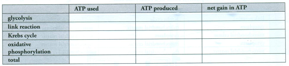explain what is meant by atp resynthesis Start studying 5- energy transfer during phys activity & measure of energy expenditure learn vocabulary, terms, and more with flashcards, games, and other study tools.