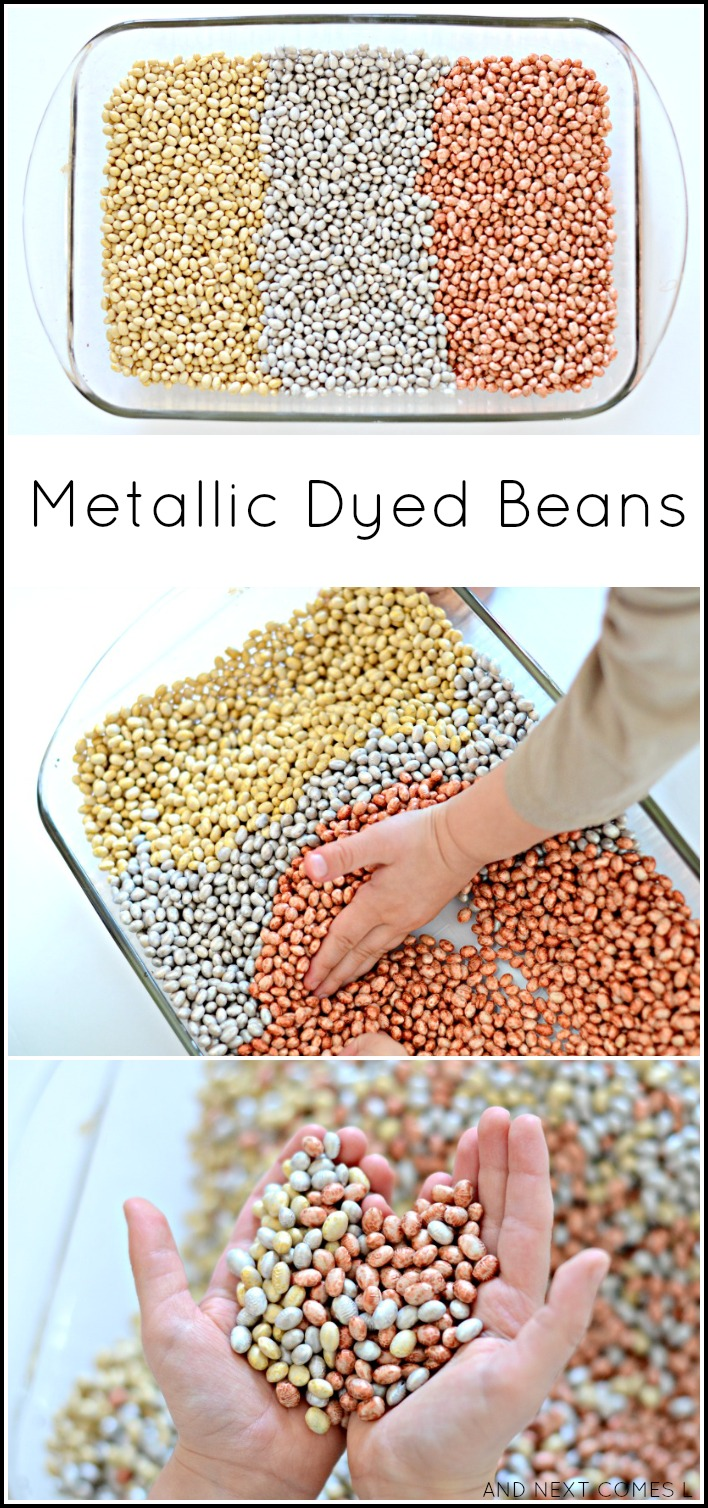 Metallic dyed beans sensory play for kids: how to dye beans in gold, silver, and copper colors form And Next Comes L