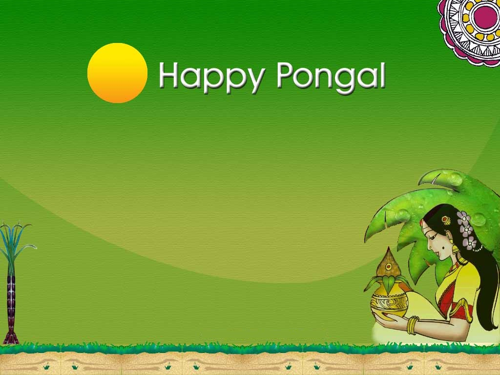 http://1.bp.blogspot.com/-tdHmAoK_WN4/Tw0HnJjdu6I/AAAAAAAADqQ/R0IeTqivVr8/s1600/Happy-Pongal-Celebration-Wallpapers-21.jpg