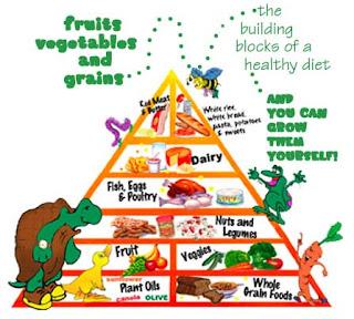 makanan sehat agar panjang umur dan awet muda