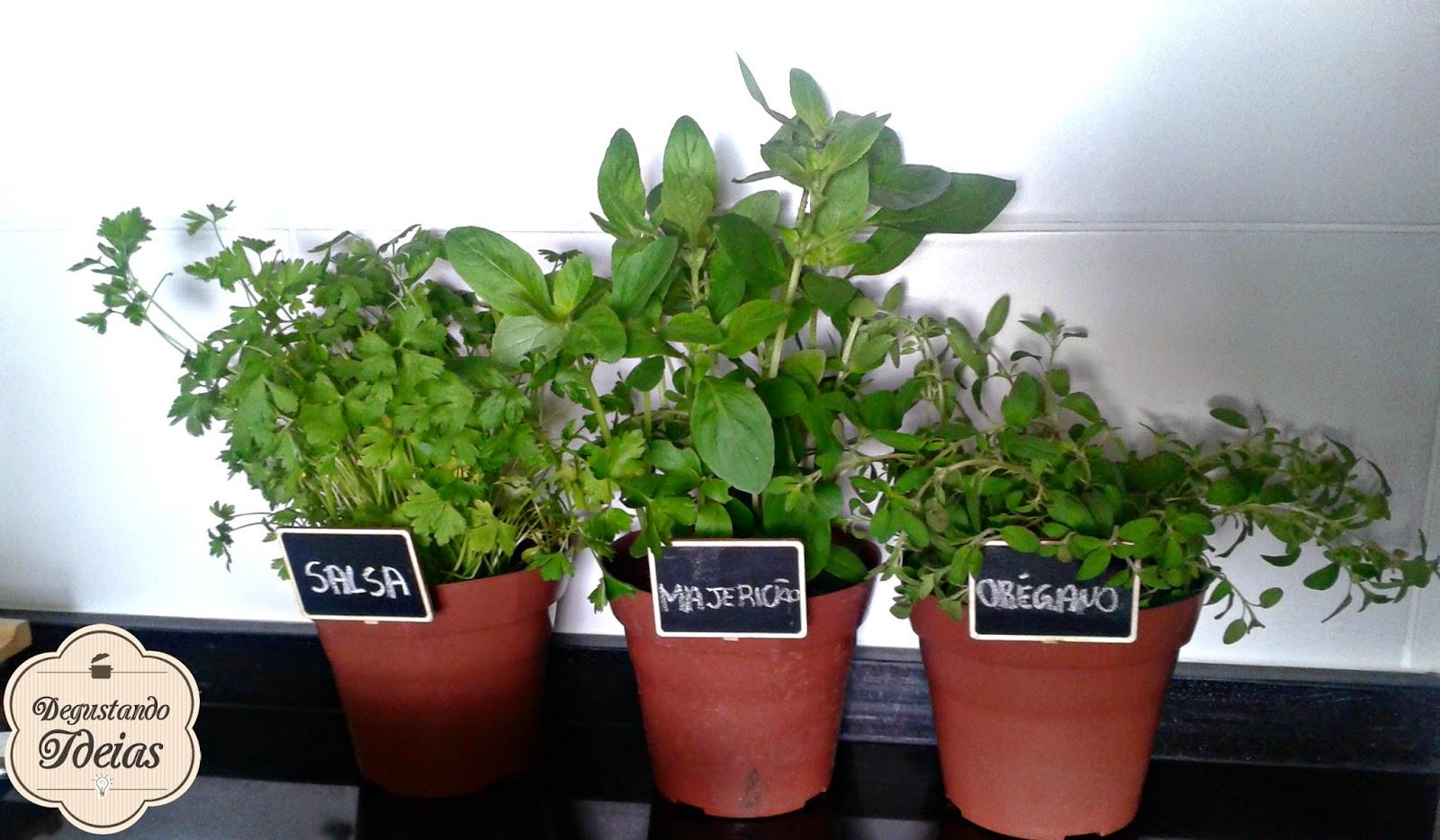Degustando Ideias Blog De Culin Ria Como Montar Uma Horta Na  ~ Horta De Temperos Na Cozinha