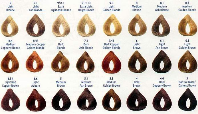 brown hair color chart - Coloring hair and hair highlighting will be ...