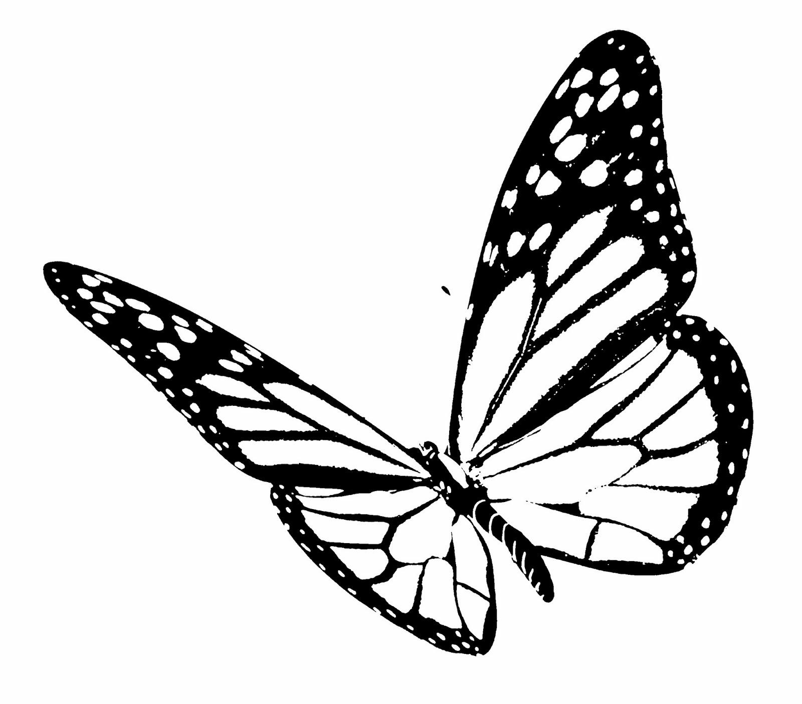 La technique du pochoir - Dessin d un papillon ...
