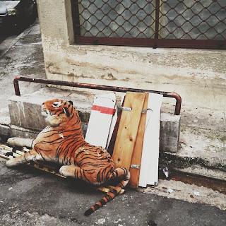 мягкий тигр