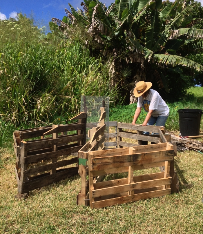 Homesteading In Hawaii African Keyhole Garden Step 1
