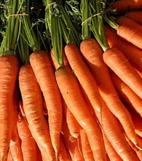 Carrot For Fat Reducing
