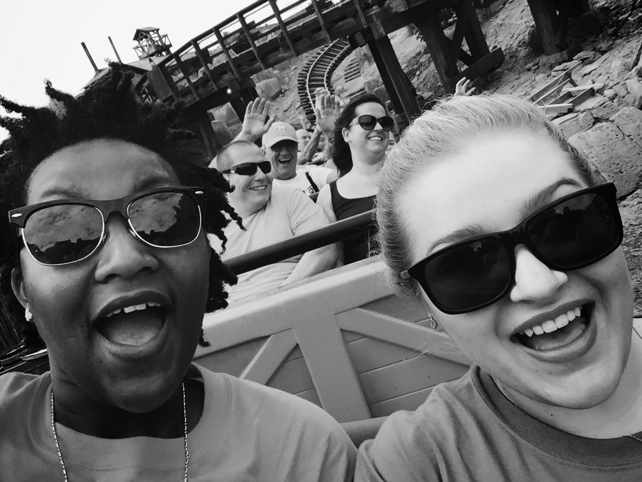 Roller Coaster Selfie