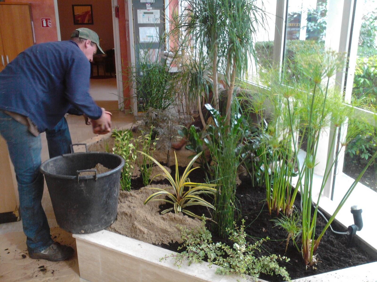 S a r l l 39 espace vert paysagiste depuis 1989 plantation for Espace vert paysagiste