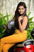Neha deshpande glam pics-thumbnail-16