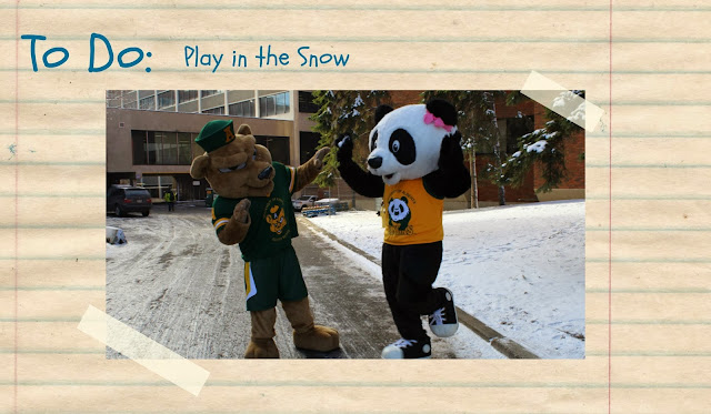 Patches and Guba have a snowball fight